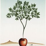 Apple/Apple Tree, 2008